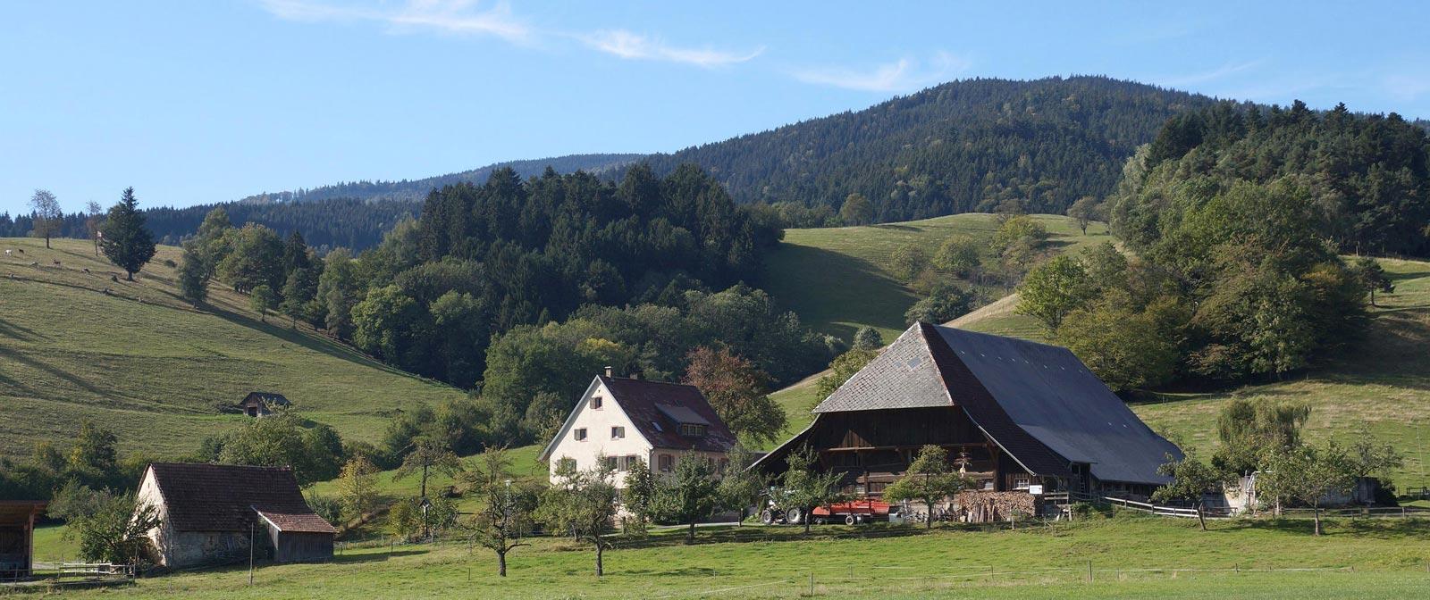 Foto Blick auf den Jungbauernhof Kirchzarten Dietenbach im Dreisamtal